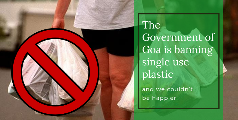 Government says no to single-use plastic