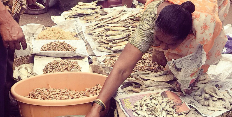 Dried Fish in Monsoon